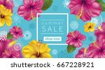 summer sale background with... | Shutterstock .eps vector #667228921