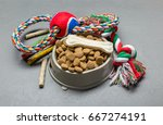 Stock photo pet accessories food toy top view 667274191