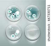 vector petri dish with molds ... | Shutterstock .eps vector #667330711