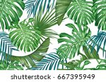 tropical leaves. palm and... | Shutterstock .eps vector #667395949