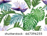 tropical leaves and flowers of... | Shutterstock .eps vector #667396255