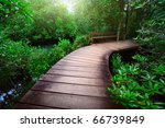 Wood Path Over River And...