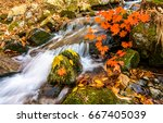 Autumn Forest Waterfall Stream...