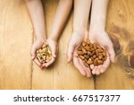 child with walnut and mother... | Shutterstock . vector #667517377