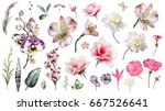 pink tropical collection with... | Shutterstock . vector #667526641