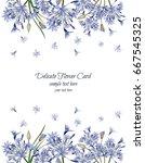delicate agapanthus card. | Shutterstock .eps vector #667545325