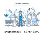 organic farming and food  farm... | Shutterstock .eps vector #667546297