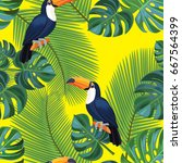 tropical pattern with toucan... | Shutterstock .eps vector #667564399