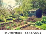 Shed In An Allotment With Soil...
