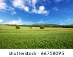 field of wheat and perfect blue ... | Shutterstock . vector #66758095