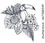 vector composition of tropical...   Shutterstock .eps vector #667588549