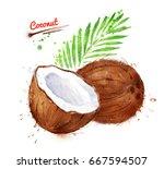 watercolor illustration of... | Shutterstock . vector #667594507