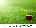 a glass of juice in the grass | Shutterstock . vector #667596475