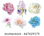 set with bright flowers. iris. ... | Shutterstock . vector #667629175