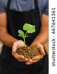 human hands holding green small ... | Shutterstock . vector #667641361