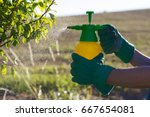 Woman with gloves spraying a...