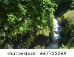 spring nature in japan | Shutterstock . vector #667733269