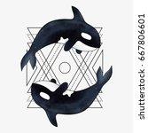 orca. marine mammal. killer... | Shutterstock . vector #667806601