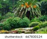 Green Design Of Tropic Garden....