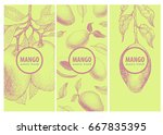 set of three labels with mango...   Shutterstock .eps vector #667835395