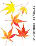 autumn red and yellow leaves | Shutterstock . vector #66786163