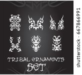 tribal ornaments and design... | Shutterstock .eps vector #667866991