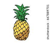 pineapple on white background... | Shutterstock .eps vector #667889701