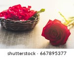 Bright Red Rose And Red Rose...