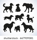 Stock vector different kinds of standing dogs set isolated on white background black ink hand drawn picture 667939381