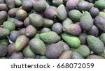 Small photo of Avocados (alligator pear) have a green-skinned fleshy body, the fruit is delicious and rich in protein, B vitamins, vitamin K, vitamin C, vitamin E, potassium and diverse fats.