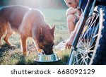 young dog owner enjoying in the ... | Shutterstock . vector #668092129