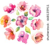 flowers set.watercolor | Shutterstock . vector #668135911
