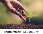 hands of farmer growing and... | Shutterstock . vector #668188879