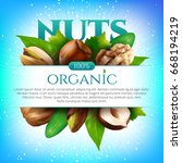 vector frame of realistic nuts... | Shutterstock .eps vector #668194219