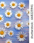 background of daisies on an old ... | Shutterstock . vector #668225941