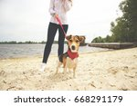 hey  over there  cropped image... | Shutterstock . vector #668291179
