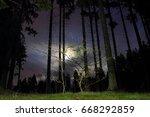 wald bei nacht | Shutterstock . vector #668292859