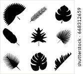palm leaves vector illustration ...   Shutterstock .eps vector #668312659