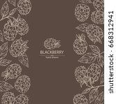 background with blackberry  a... | Shutterstock .eps vector #668312941