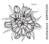 bouquet of tulip flowers...   Shutterstock .eps vector #668456104