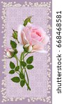 floral background. greeting... | Shutterstock . vector #668468581