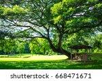 small pavilion under big tree... | Shutterstock . vector #668471671