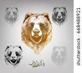 bear vector lettering | Shutterstock .eps vector #668488921