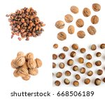 collection of walnuts and... | Shutterstock . vector #668506189