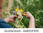 woman making flower crown ...   Shutterstock . vector #668529505