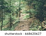 road in a beautiful forest in... | Shutterstock . vector #668620627