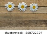 daisy flowers on wooden... | Shutterstock . vector #668722729