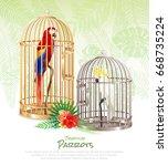 bird market parrots poster with ... | Shutterstock .eps vector #668735224