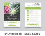 minimalistic spa and healthcare ... | Shutterstock .eps vector #668752351