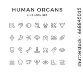 set line icons of human organs... | Shutterstock .eps vector #668845015